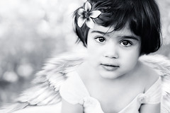 Angel (mylaphotography) Tags: art angel photomanipulation painting wings bokeh corelpainter rahi childphotography jaber 40d mylaphotography fairytalephotography