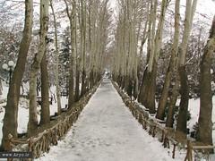 Jamshidieh Park, Iran