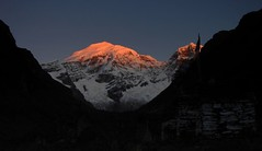 Chomolhari sunrise (blogmulo) Tags: travel light mountains sunrise trek october asia dragon bhutan buddhism viajes summit himalaya montaas 2007 druk chomolhari jhomolhari blogmulo