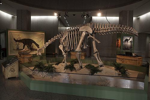 Nigersaurus: Africa's Long-Necked Fern Mower