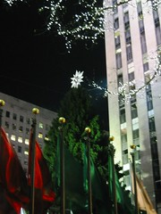 Rockefeller Center Christmas Tree 2