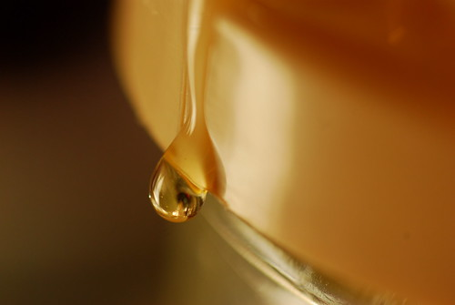 Honey by alsjhc, on Flickr