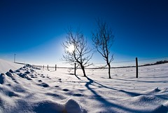 Blue Blue Blue Sky (ryian) Tags: blue winter sky snow canada cold frozen edmonton freezing atmosphere frosty arctic alberta chilly icy snowfall soe bitter coldness wintry naturesfinest firmament mywinners abigfave superbmasterpiece diamondclassphotographer ysplix theunforgettablepictures brillianteyejewel naturewatcher betterthangood