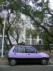 080211 a little purple car