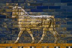Pergamon Museum - Ishtar Gate _DSC17914 (youngrobv) Tags: berlin brick archaeology museum germany tile deutschland nikon gate europa europe european bricks relief tiles german arabian d200 babylon ishtar glazed pergamon assyrian babylonian polychrome ishtargate archaeologist nebuchadnezzar museumisland 0802 adad ramman ishkur 18200mmf3556gvr thunderer weathergod polychromed nebuchadnezzarii museeinsel youngrobv  stormgod  dsc17914 babishtar robertkoldewey
