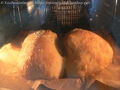 The cocodrillo - baking  014