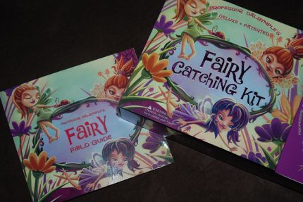 Fairy field guide & catching kit