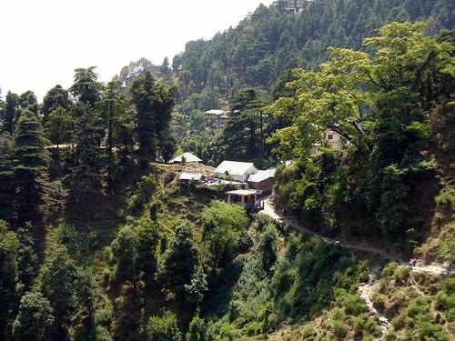 Paysage Dharamsala