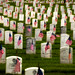 Memorial Day Flags, Los Angeles National Cemetery by secondcareer