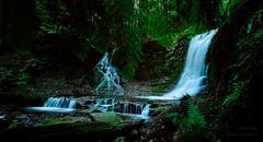 20170210 Photo 037 (flicka.pang) Tags: fujifilm fujifilmxt1 fujifilmxf1024mmf4rois horseshoefalls mtfieldnationalpark xt1 waterfall waterscape tasmania australia