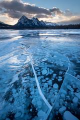 Abraham I (Sandra Herber) Tags: abrahamlake alberta bubbles frozen ice winter