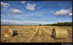 Straw Bales. (Pat Dalton...) Tags: blue trees sky clouds canon wire leicestershire straw sigma hedge fields poles bales 1770mm 450d pdeee454
