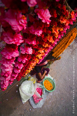 Flower lady (Kamrul - Hasan) Tags: street morning pink red people woman yellow lady worship hindu seller profession 2011