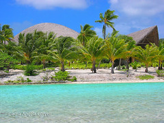 Bora Bora (firefly242) Tags: vacation beach polynesia islands paradise southpacific beaches tropicalislands tahiti resorts borabora lemeridien tropicalparadise frenchpolynesia exoticvacation aplusphoto exoticholiday colourartaward lemeridienborabora polynesiefranais exoticresorts