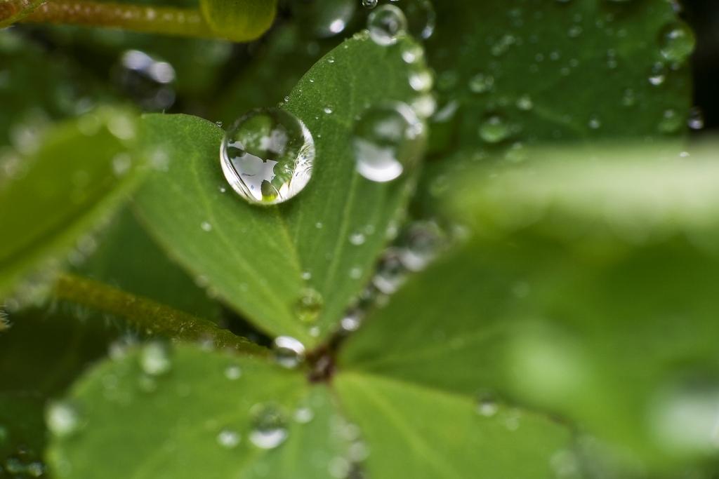 waterdrops-1