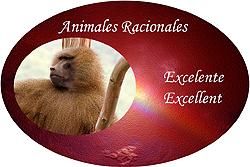 animales racionales