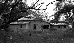 Griffins Corner House (tantrum_dan) Tags: roof bw house abandoned tin rust florida olympus e500 wauchula tantrumdan tantrumimagery