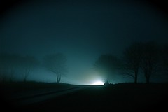 Foggy Silhouettes (Voetmann) Tags: trees mist cold fog denmark nightshot silhouettes headlights danmark foggynight mistynight abigfave canon1755mmf28is nakedtreesfreeze beingnaturalisticlyphilosofic