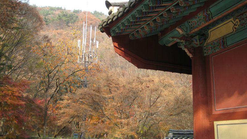 Daejeon 047