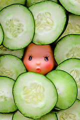 Cuke Amber (boopsie.daisy) Tags: food silly cute green strange face fun amber weird crazy doll head peekaboo cucumber kitsch vegetable multiple series peek veggie peeking wacky quirky lots kooky