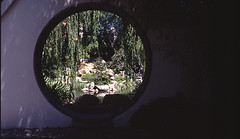 Moon window, Chinese garden Sydney (claudia@flickr) Tags: windows garden chinese sydney australia canona1 scannedslides moonwindow moulddamage