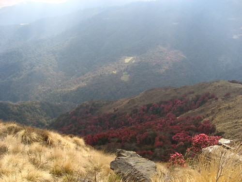 Valley views from Deurali Pass