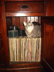 Eva on Records