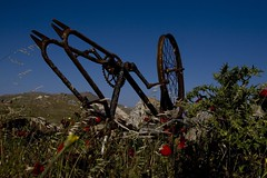 No burial for bicycles -  20080504_1001ed (Dimitris Papazimouris) Tags: bicycle rural island greek spring tokina1224 greece rusted fields deserted mykonos canon30d