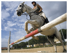 VM3D8939_LR_MP.jpg (@Visual_Mind) Tags: horse animal sport jump ride exercise outdoor deporte ocio professionalphotographer ejercicio hpica airelibre saltos caballe miguelpereira backriding leaisre activida wwwmiguelpereiraes httppaphotosheltercomcmiguelpereira
