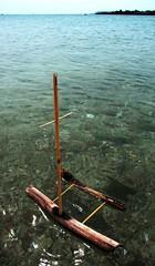Shell Beach pooh stick