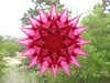 Pink Double Sunburst Star