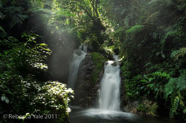 RYALE_Rwanda_Uganda_Safari-166