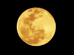 Finally the Full Moon (jalalspages) Tags: moon nature yellow colours fullmoon hues firstquality golddragon jalalspages
