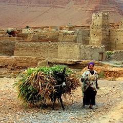 Mujer bereber (Ametxa) Tags: sahara desert morocco squareformat maroc desierto marruecos aesthetic 500x500 10faves diamondclassphotographer flickrdiamond favesextreme15