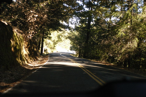 on the road, northern California