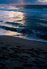 Ogni piccola lacrima (Lebeg) Tags: light sunset sea sand tramonto mare luce sabbia tirrenia maredinverno lebeg abbiatepazienzamastalucemigarbaabbestia quandolamacchinafotograficasafarelefotodasola