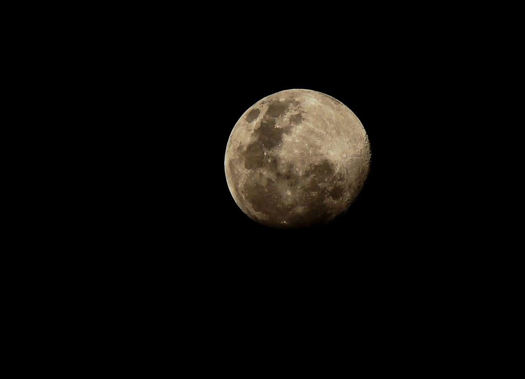 Moon Song...