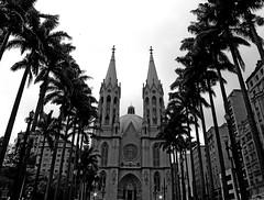 Catedral da Sé (Eli K Hayasaka) Tags: brazil blackandwhite bw monochrome brasil blackwhite fb sãopaulo monochromatic pb sampa pretoebranco facebook brancoepreto monocromático praçadasé duetos hayasaka elikhayasaka