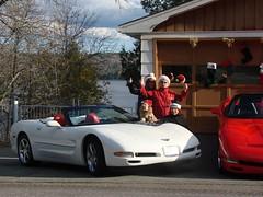 Xmas at Cromwell's in Nov 088 (redvette) Tags: christmas corvette redvette tomhiltz