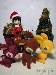 Merry Christmas! (esmereldes) Tags: santa christmas ornament ornaments santaclaus deerylou christmas2007 img0520