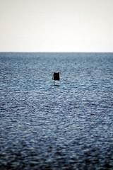 necessary (korayatasoy) Tags: road trip lake salt lonely konya gl golbasi tuz