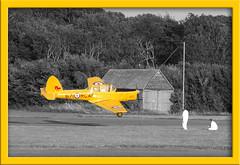 Yellow Plane (whitbywoof) Tags: yellow d50 nikon selectivecolour friendlychallenge