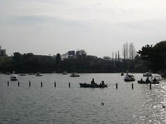 200803023_洗足池公園 002