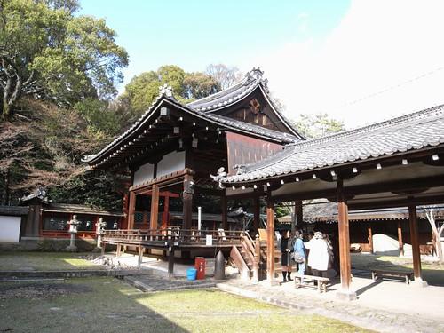 氷室神社(しだれ桜)-08