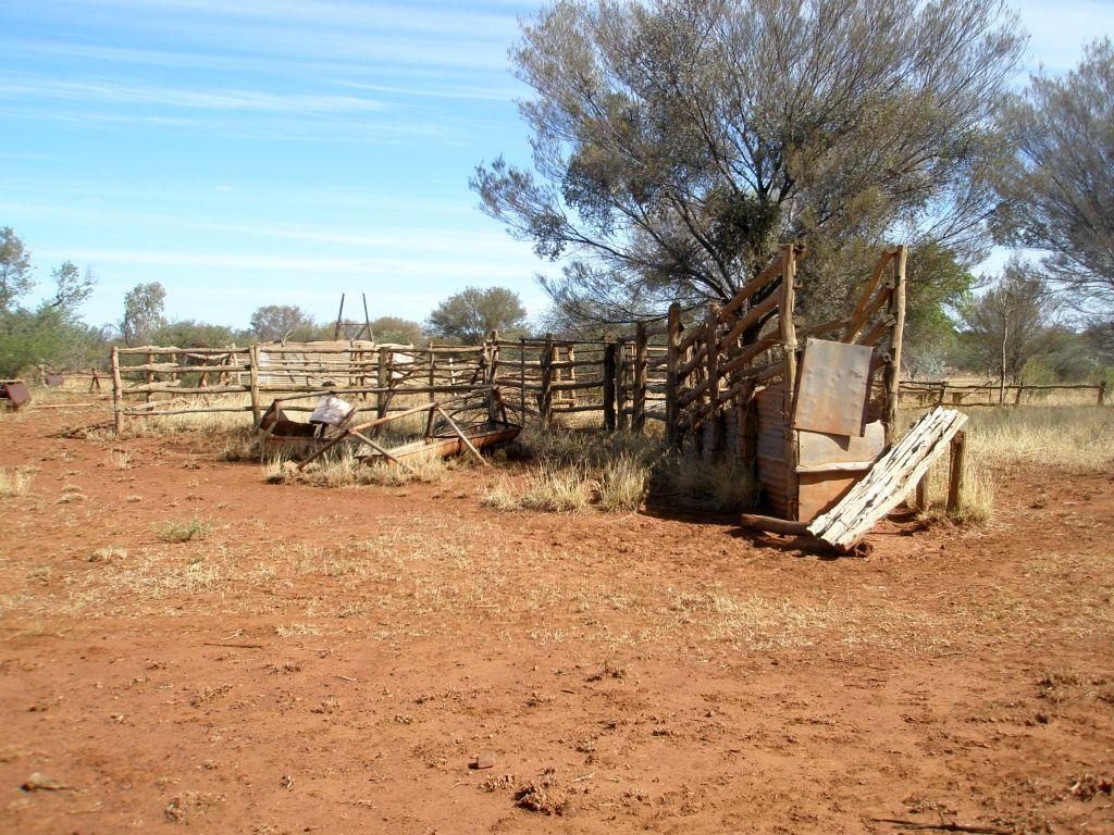 cattleyard lge