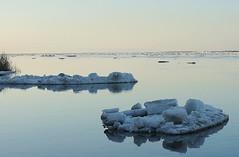 ice drift (junior_z) Tags: ice river spring icedrift lenariver siberianriver