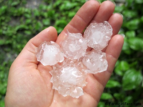 handful of hail - Farmgirl Fare