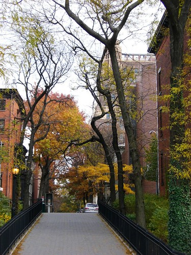 Gorgeous Brooklyn Heights