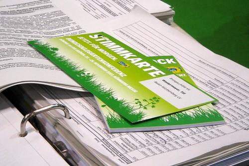 Grüne Stimmkarte