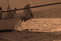 R3247 (Jean-Phi Deb) Tags: sunshine tropez yachts vela deb shamrock cambria eleonora altair sainttropez mariquita coye lullworth tuiga traditionalwoodenboats sainttrop moonbeamiv jeanphideb